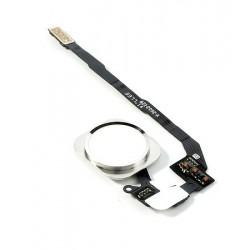 Καλώδιο Flex για home button για iPhone 5s, White