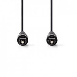 NEDIS CAGT25000BK20 Optical Audio Cable TosLink Male TosLink Male 2.0 m Black